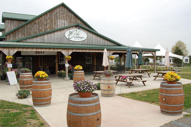 heritage_vineyards_01_263547471_r644x428